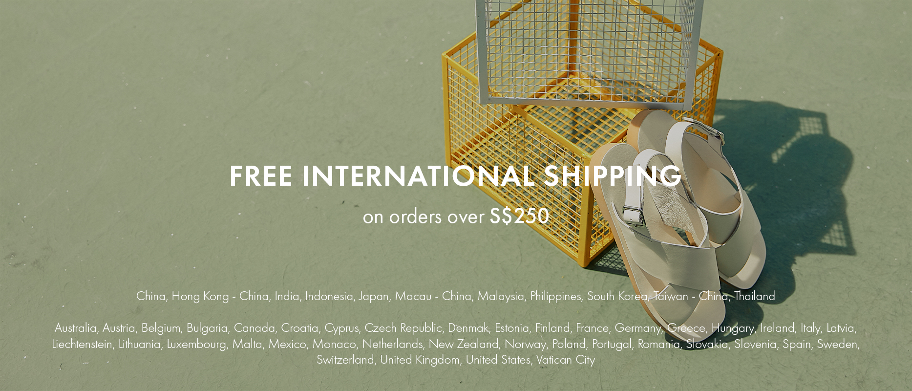 PAZZION Free Shipping 2020 Revised ($250)